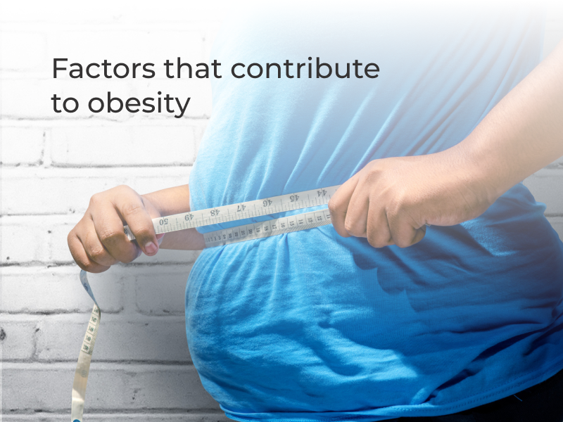 10 factors that contribute to obesity